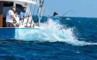 28th Annual Cheeca Lodge Presidential Sailfish Tournament