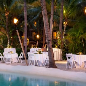 Wedding Banquet Under the Palm Trees