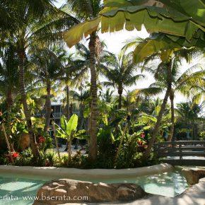 Florida keys resorts in islamorada cheeca lodge spa for 305 salon tavernier