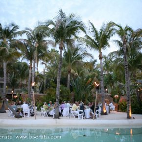 Wedding Party Under Palm Trees