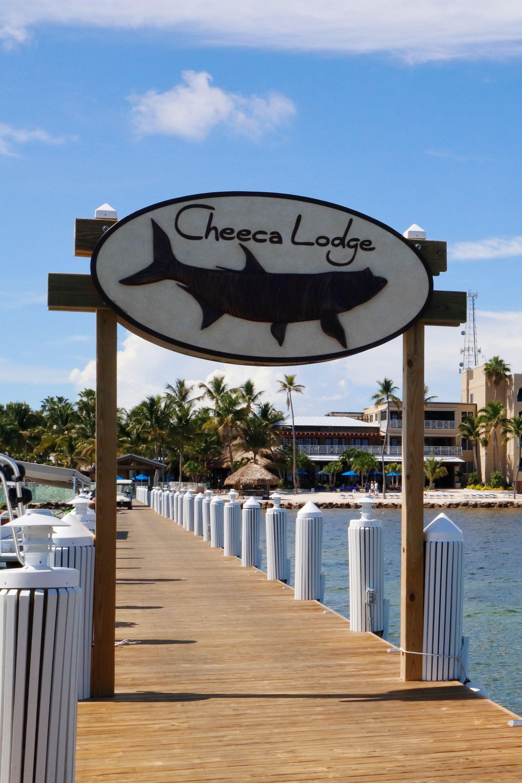 Florida Keys Family Resorts Cheeca Lodge Amp Spa